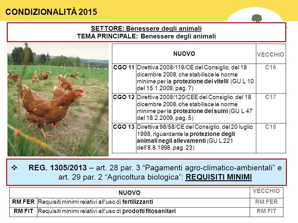 CONDIZIONALITÀ 2015 SETTORE: Benessere degli animali. TEMA PRINCIPALE: Benessere degli animali. NUOVO.