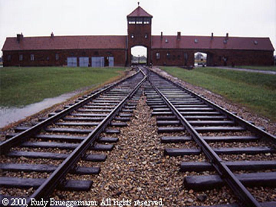 Auschwitz gate Prof. Vincenzo Cremone
