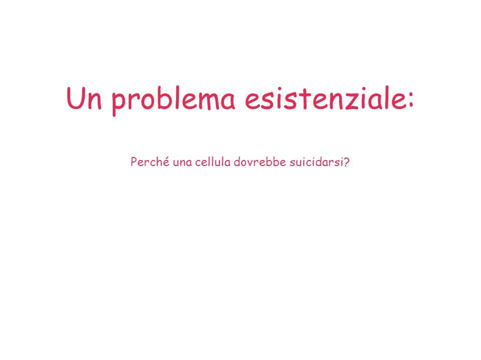 Un problema esistenziale: