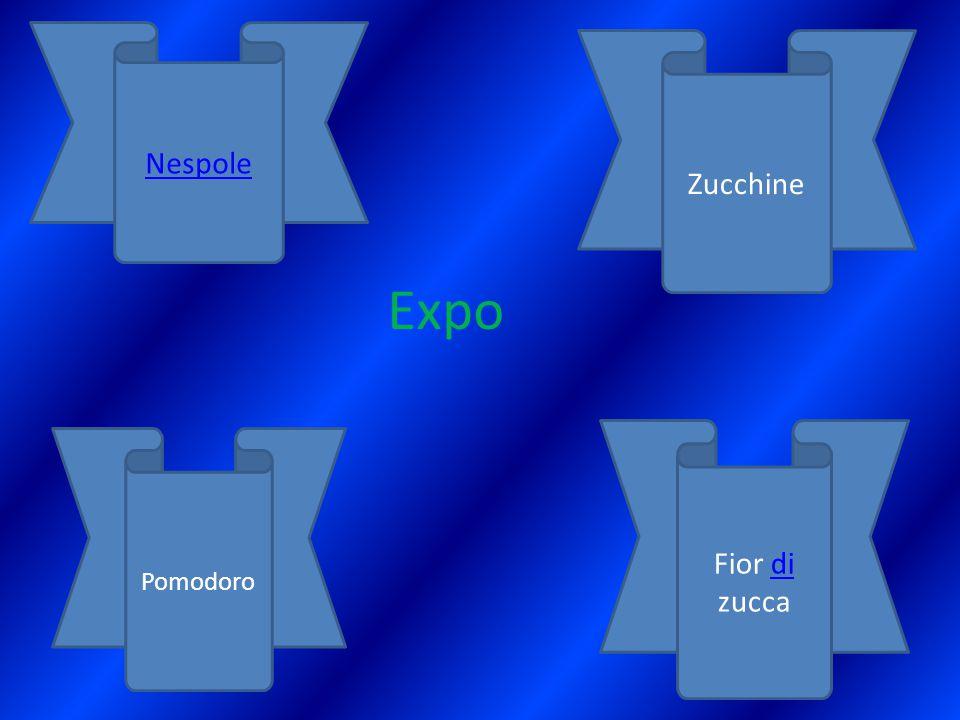 Nespole Zucchine Expo Fior di zucca Pomodoro