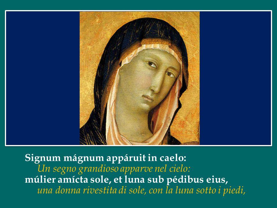 Signum mágnum appáruit in caelo: