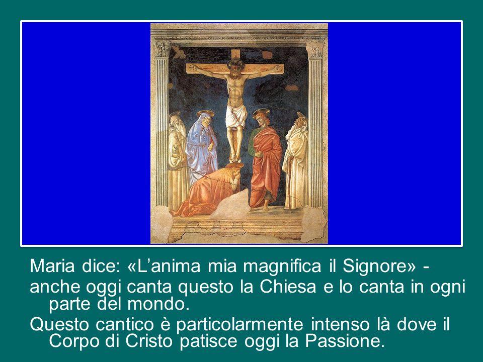 Maria dice: «L'anima mia magnifica il Signore» - anche oggi canta questo la Chiesa e lo canta in ogni parte del mondo.