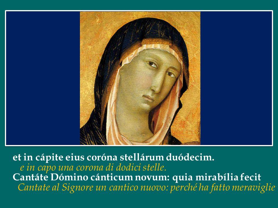 et in cápite eius coróna stellárum duódecim.