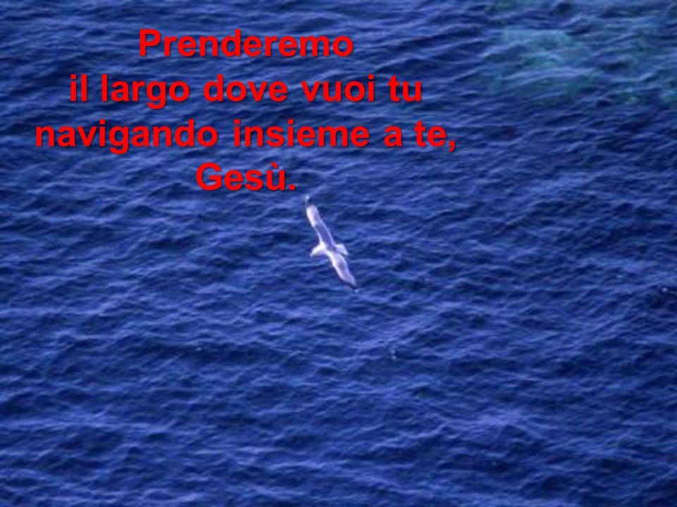 il largo dove vuoi tu navigando insieme a te, Gesù.