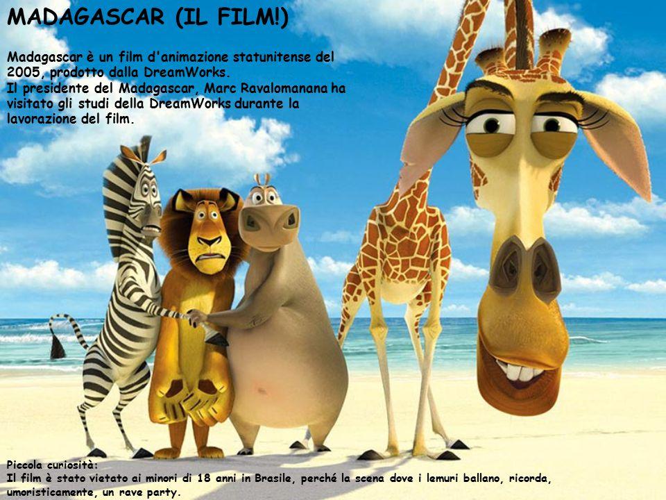 MADAGASCAR (IL FILM!) Madagascar è un film d animazione statunitense del 2005, prodotto dalla DreamWorks.