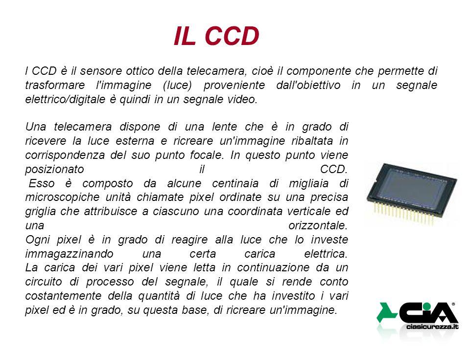 IL CCD