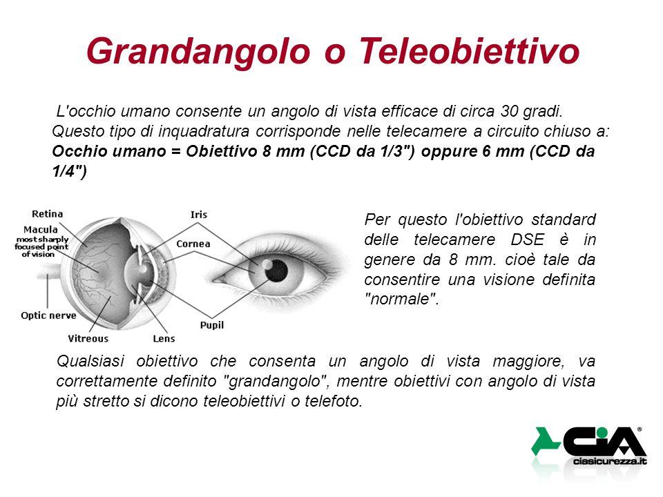 Grandangolo o Teleobiettivo