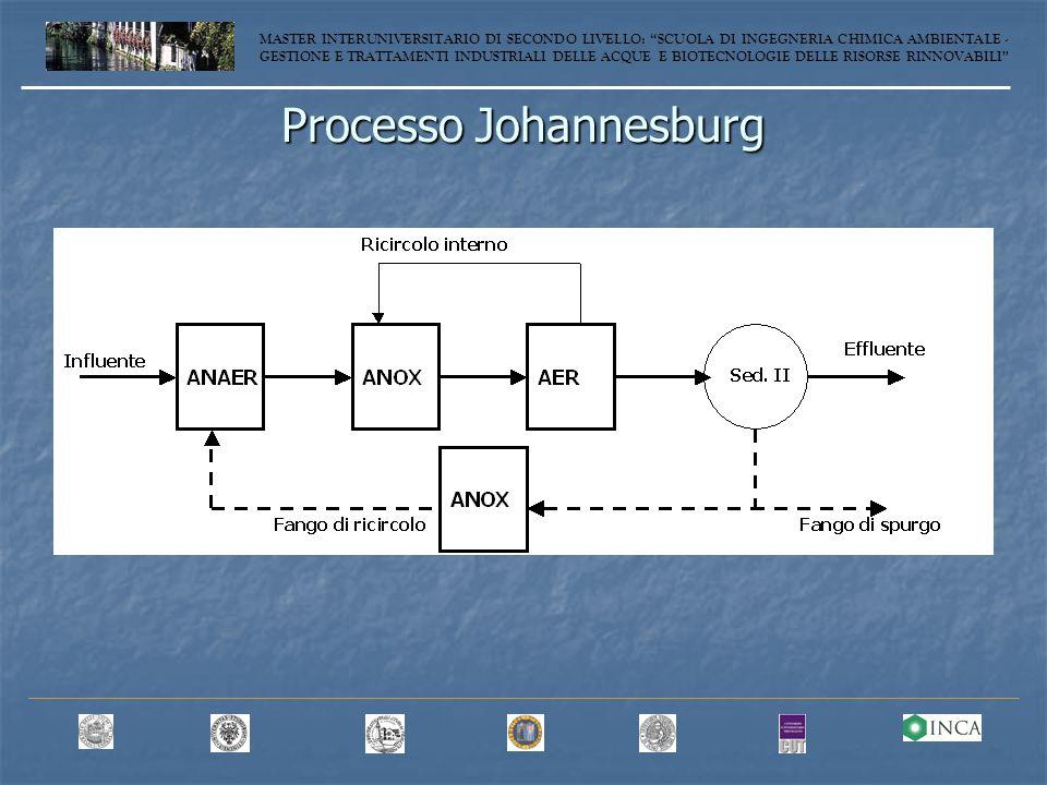 Processo Johannesburg