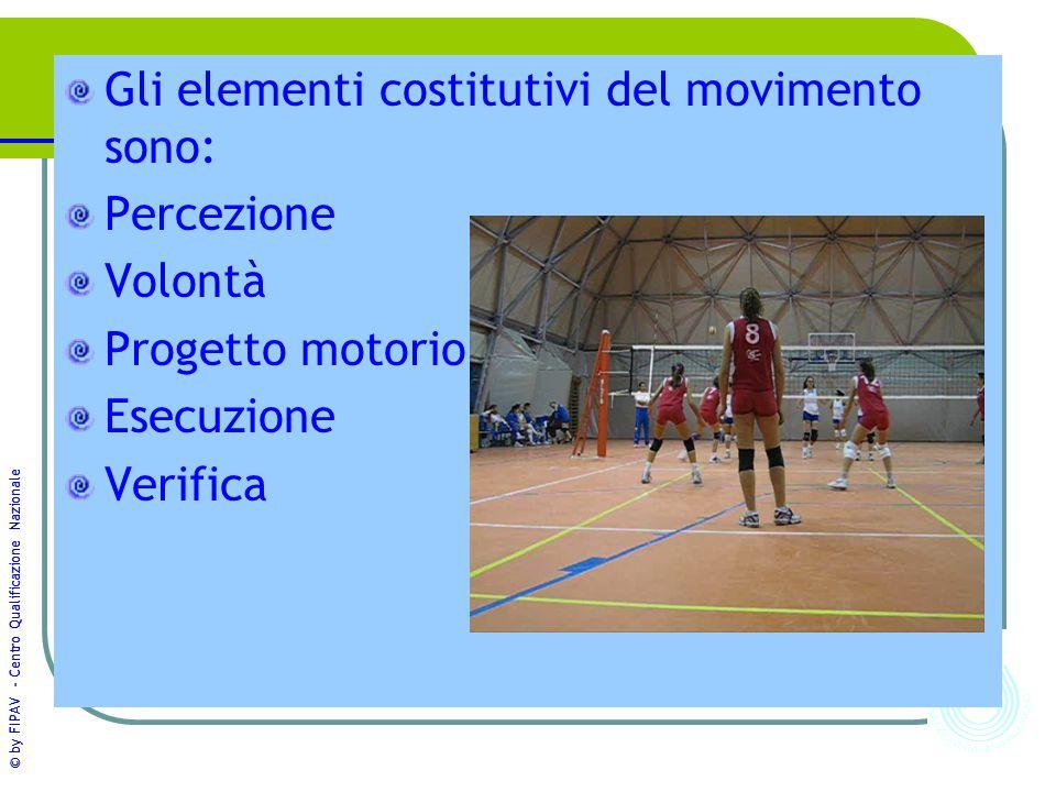 Gli elementi costitutivi del movimento sono: