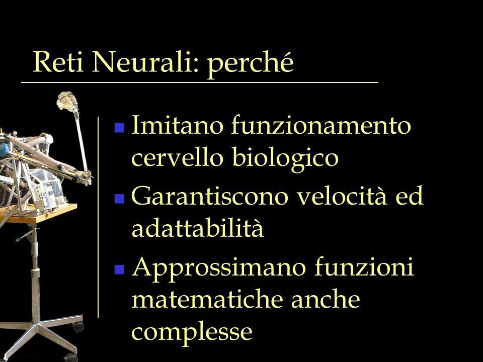 Reti Neurali: perché Imitano funzionamento cervello biologico