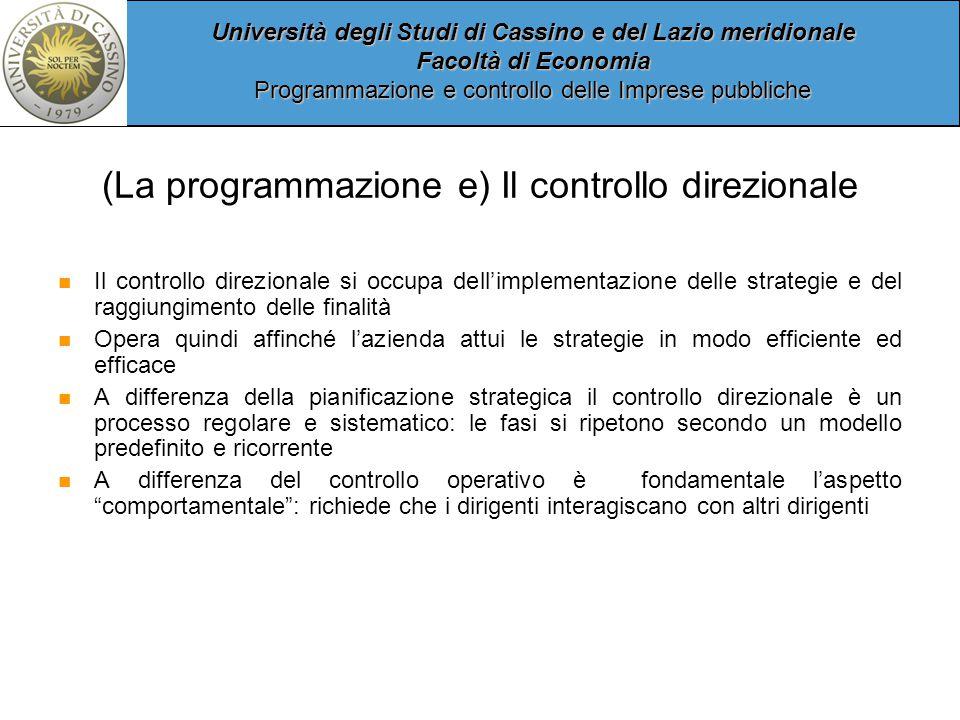 (La programmazione e) Il controllo direzionale