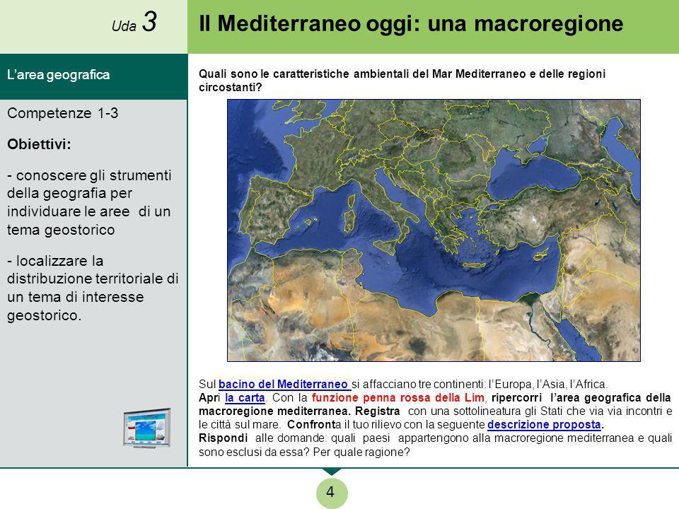 Il Mediterraneo oggi: una macroregione