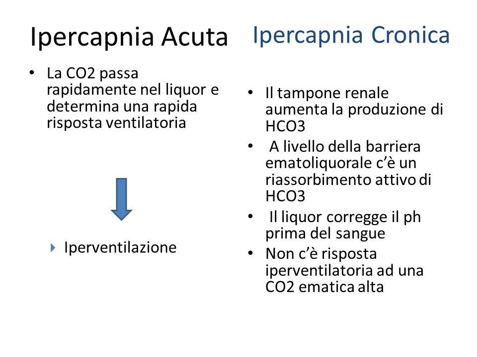 Ipercapnia Acuta Ipercapnia Cronica