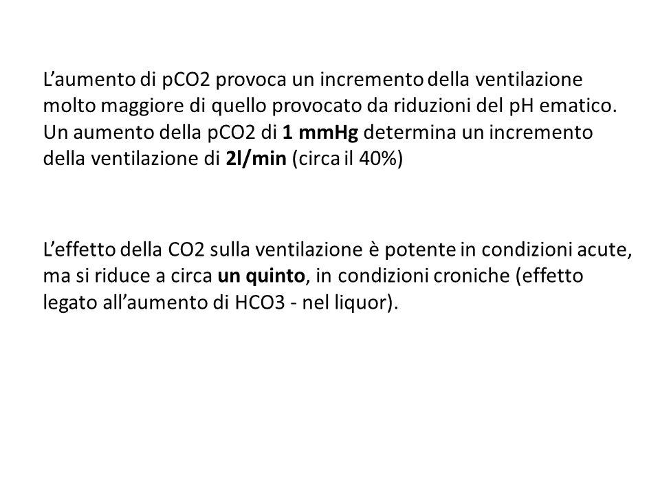 L'aumento di pCO2 provoca un incremento della ventilazione molto maggiore di quello provocato da riduzioni del pH ematico. Un aumento della pCO2 di 1 mmHg determina un incremento della ventilazione di 2l/min (circa il 40%)
