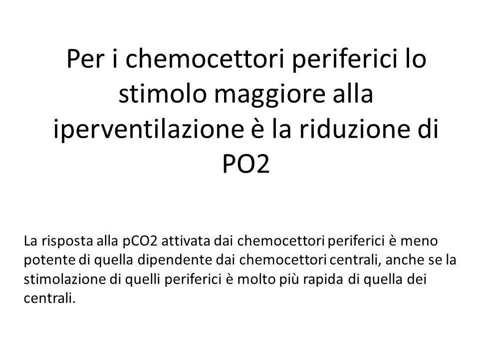 Per i chemocettori periferici lo stimolo maggiore alla iperventilazione è la riduzione di PO2