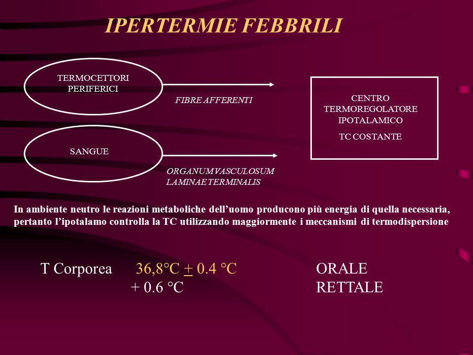 IPERTERMIE FEBBRILI T Corporea 36,8°C + 0.4 °C ORALE + 0.6 °C RETTALE