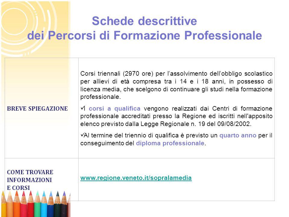 Schede descrittive dei Percorsi di Formazione Professionale