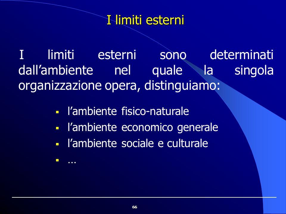 I limiti esterni I limiti esterni sono determinati dall'ambiente nel quale la singola organizzazione opera, distinguiamo: