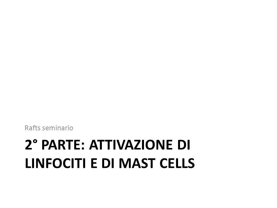 2° parte: attivazione di linfociti e di mast cells
