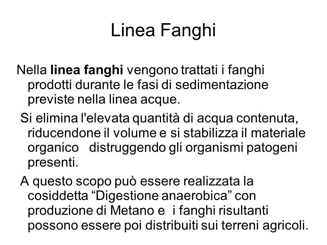 Linea Fanghi Nella linea fanghi vengono trattati i fanghi prodotti durante le fasi di sedimentazione previste nella linea acque.