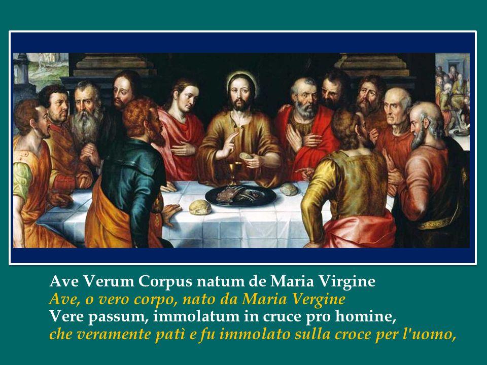 Ave Verum Corpus natum de Maria Virgine
