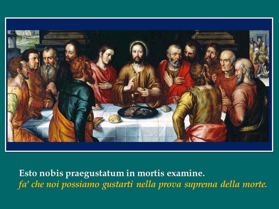 Esto nobis praegustatum in mortis examine.