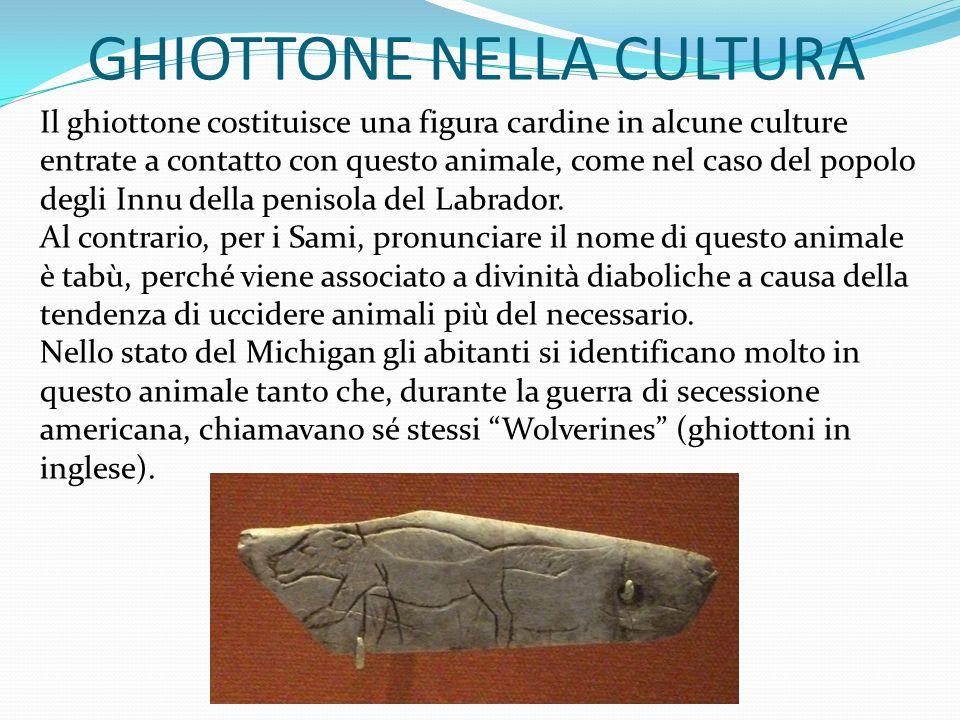 GHIOTTONE NELLA CULTURA