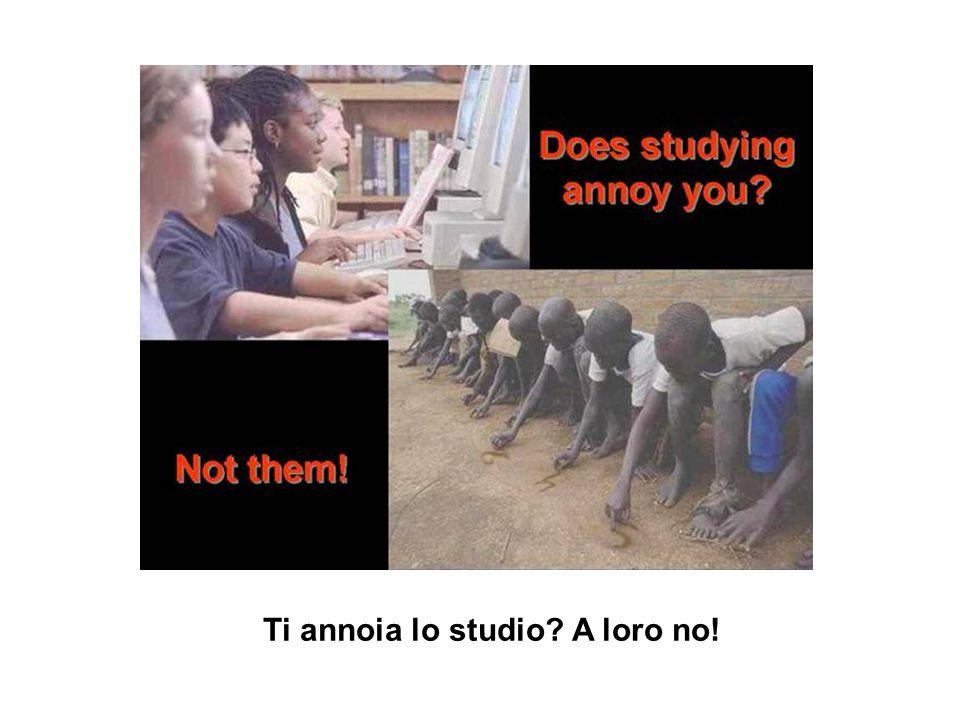 Ti annoia lo studio A loro no!