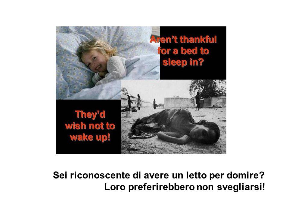 Loro preferirebbero non svegliarsi!