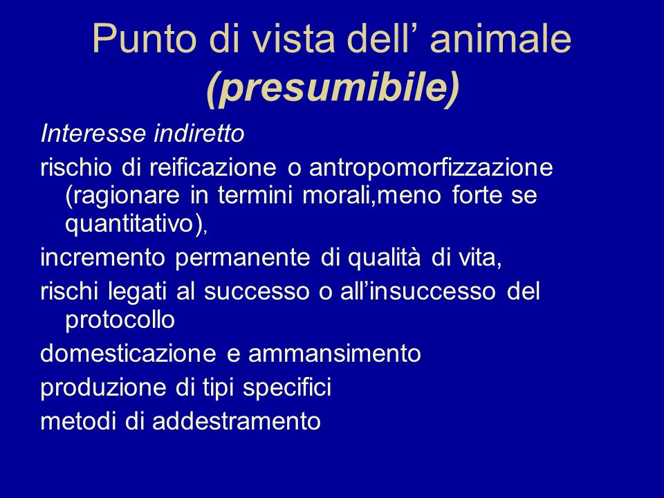Punto di vista dell' animale (presumibile)