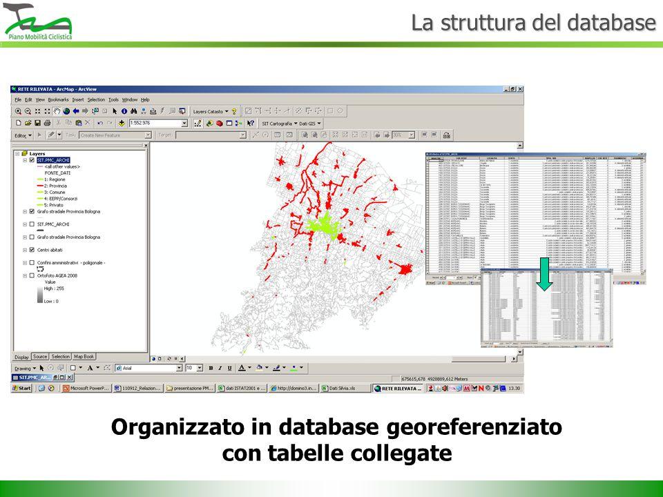 Organizzato in database georeferenziato