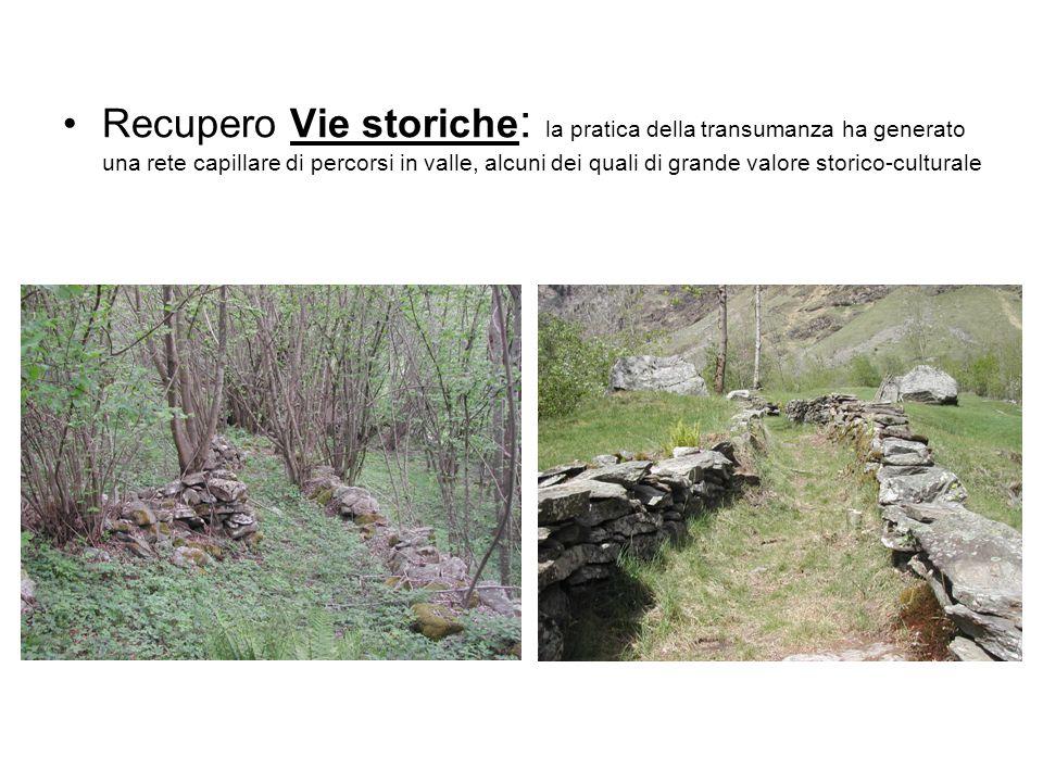 Recupero Vie storiche: la pratica della transumanza ha generato una rete capillare di percorsi in valle, alcuni dei quali di grande valore storico-culturale