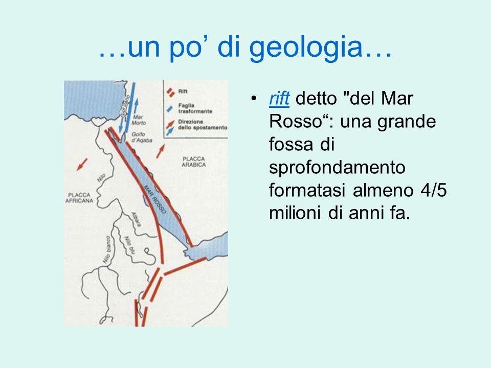 …un po' di geologia… rift detto del Mar Rosso : una grande fossa di sprofondamento formatasi almeno 4/5 milioni di anni fa.