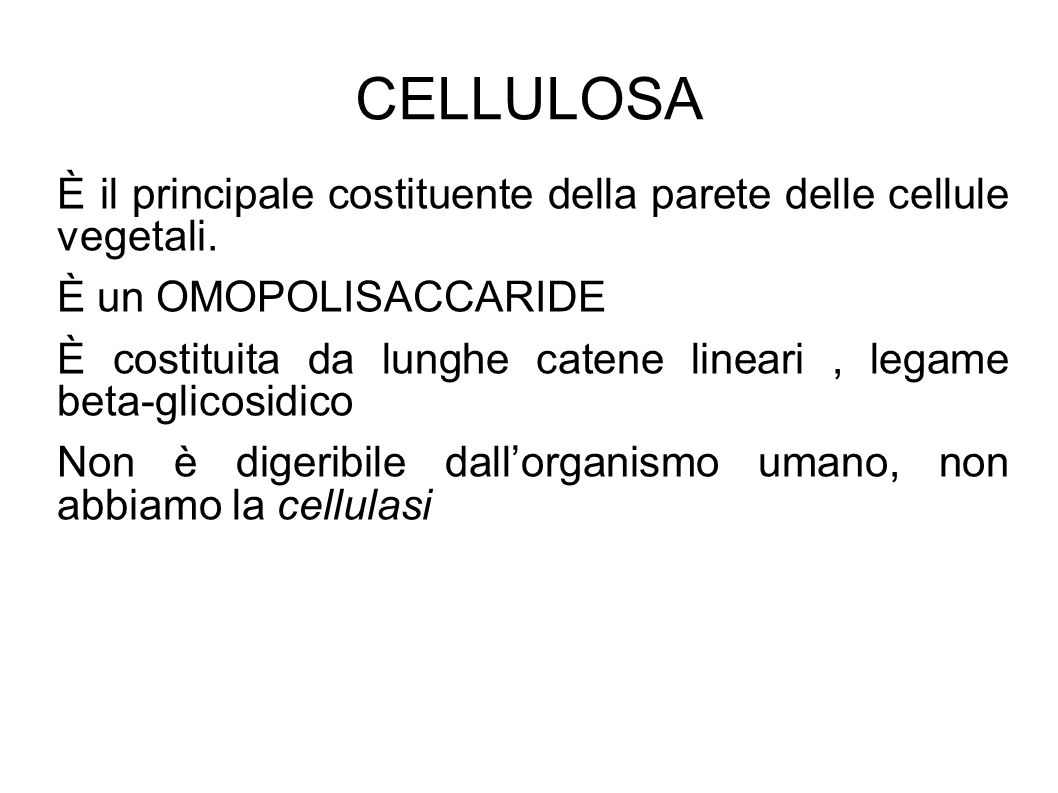 CELLULOSA È il principale costituente della parete delle cellule vegetali. È un OMOPOLISACCARIDE.