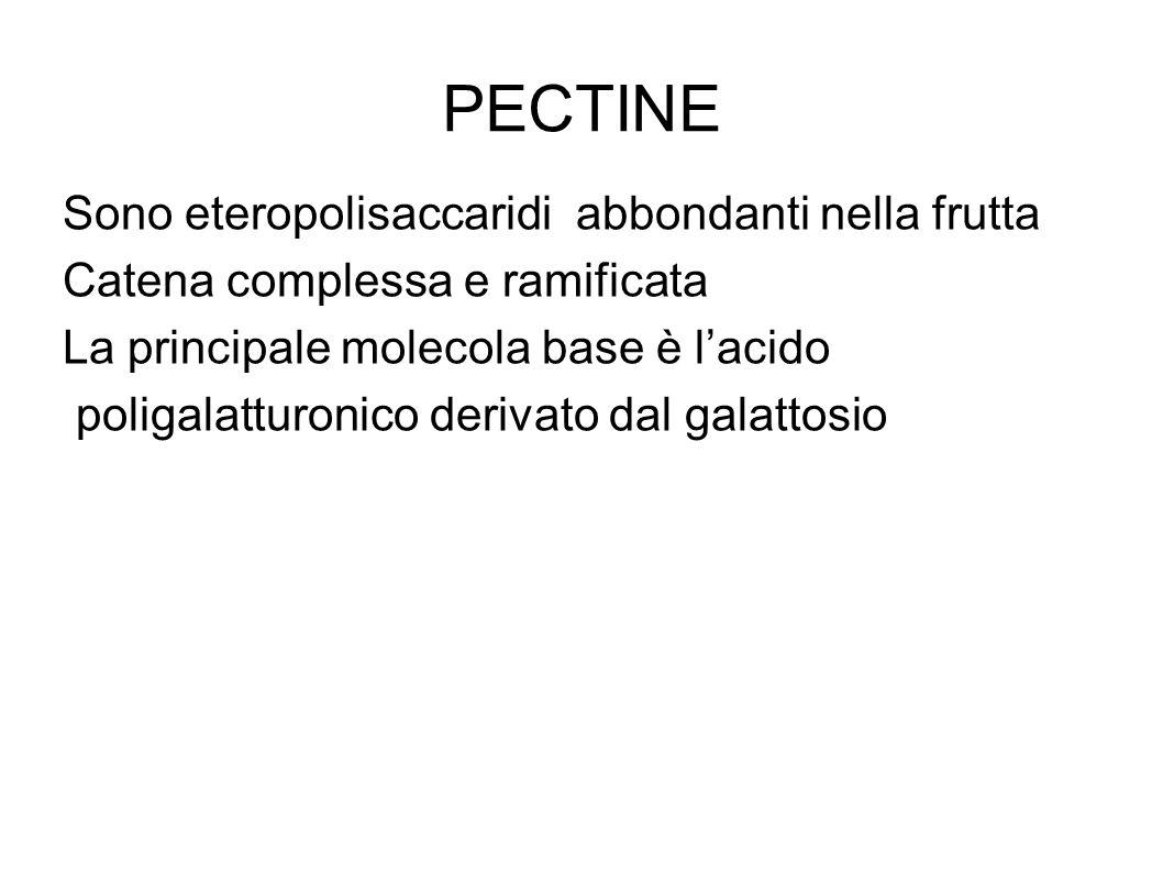 PECTINE Sono eteropolisaccaridi abbondanti nella frutta