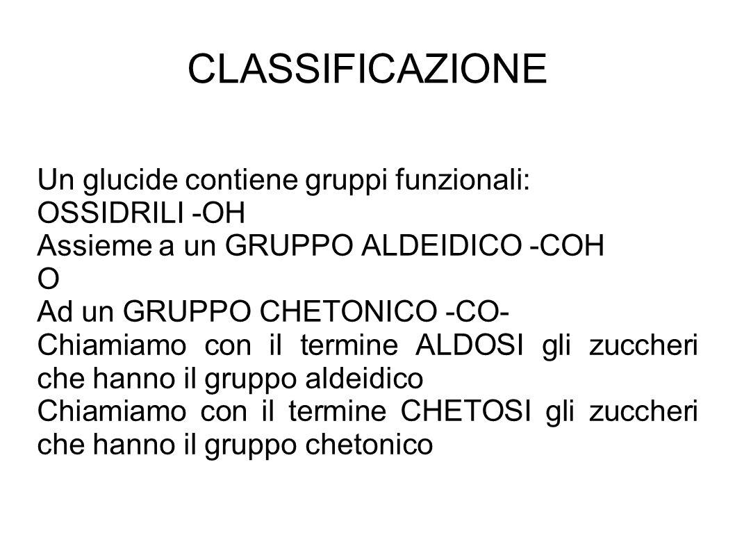 CLASSIFICAZIONE Un glucide contiene gruppi funzionali: OSSIDRILI -OH