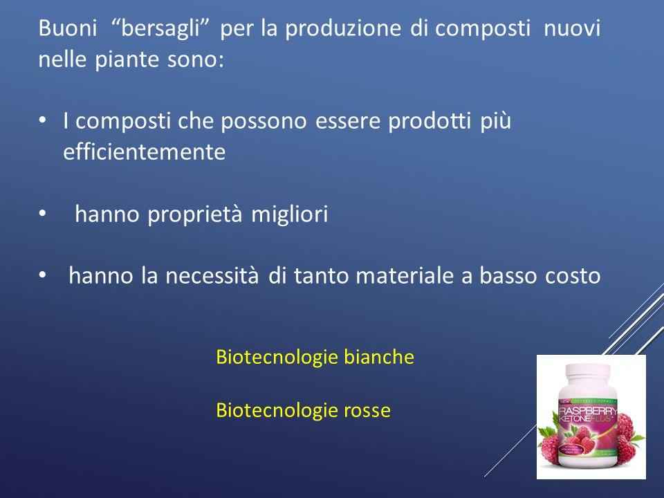 I composti che possono essere prodotti più efficientemente