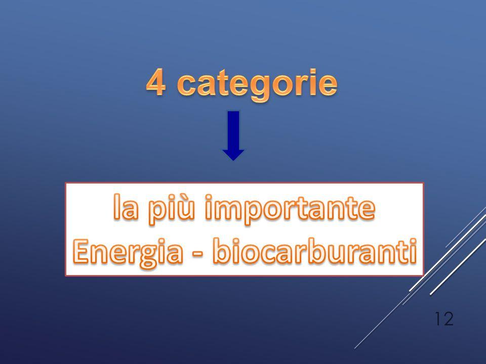 Energia - biocarburanti