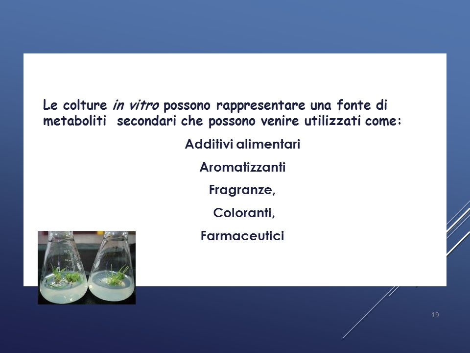 Additivi alimentari Aromatizzanti Fragranze, Coloranti, Farmaceutici