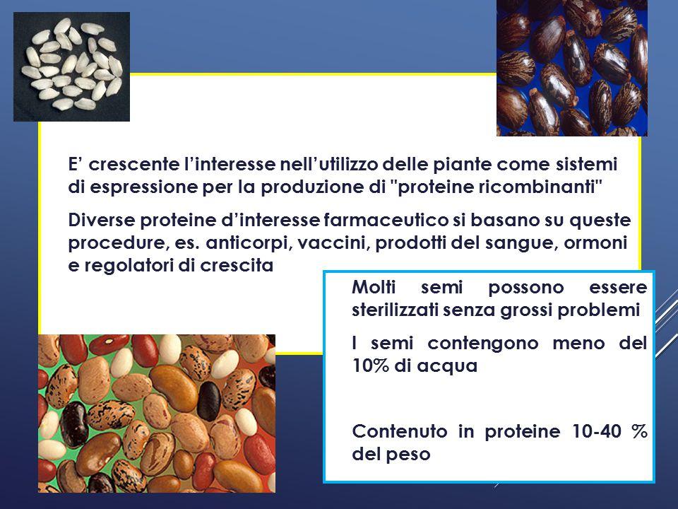 Molti semi possono essere sterilizzati senza grossi problemi