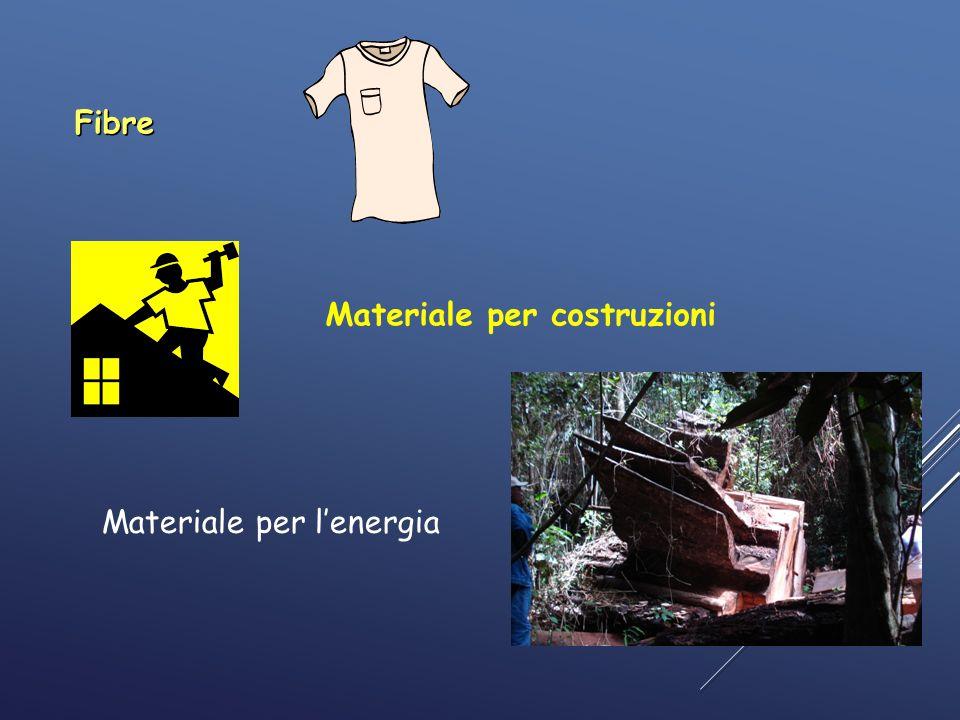 Fibre Materiale per costruzioni Materiale per l'energia 3