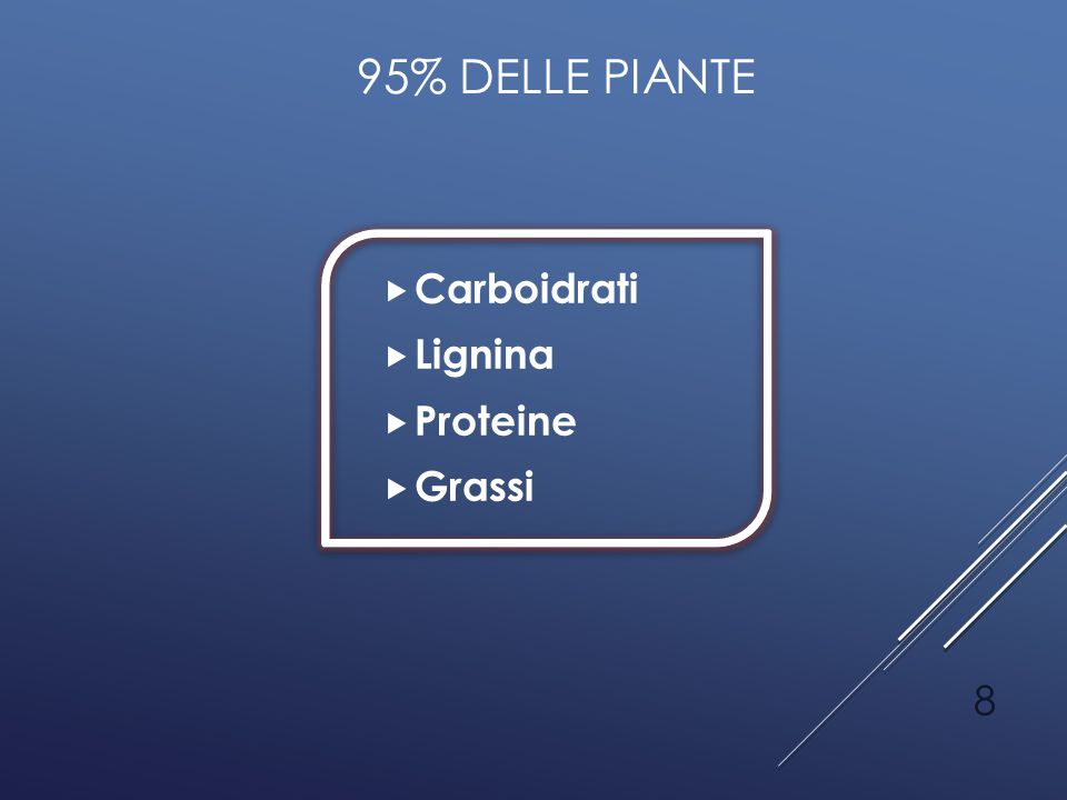 95% delle piante Carboidrati Lignina Proteine Grassi