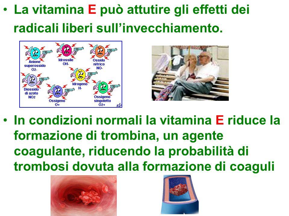 La vitamina E può attutire gli effetti dei