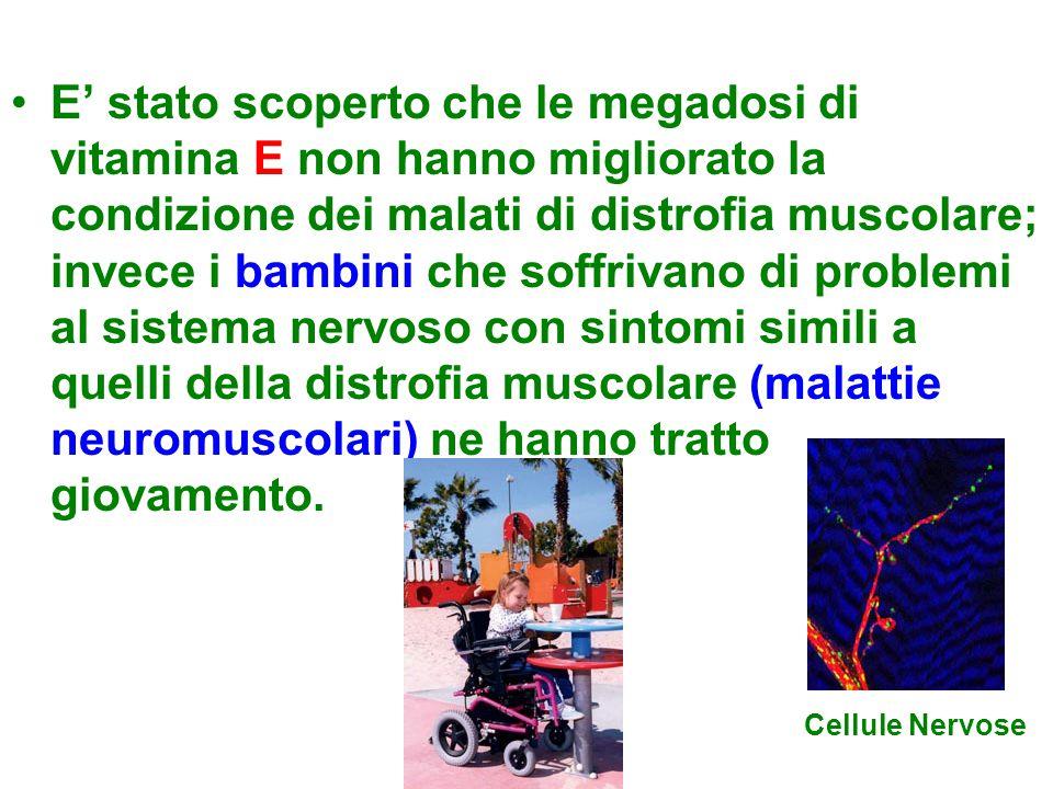 E' stato scoperto che le megadosi di vitamina E non hanno migliorato la condizione dei malati di distrofia muscolare; invece i bambini che soffrivano di problemi al sistema nervoso con sintomi simili a quelli della distrofia muscolare (malattie neuromuscolari) ne hanno tratto giovamento.