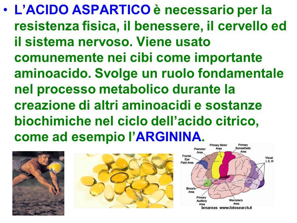 L'ACIDO ASPARTICO è necessario per la resistenza fisica, il benessere, il cervello ed il sistema nervoso.