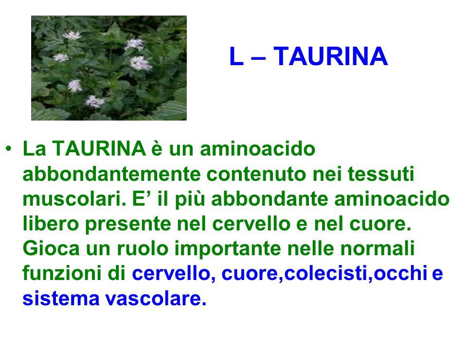 L – TAURINA
