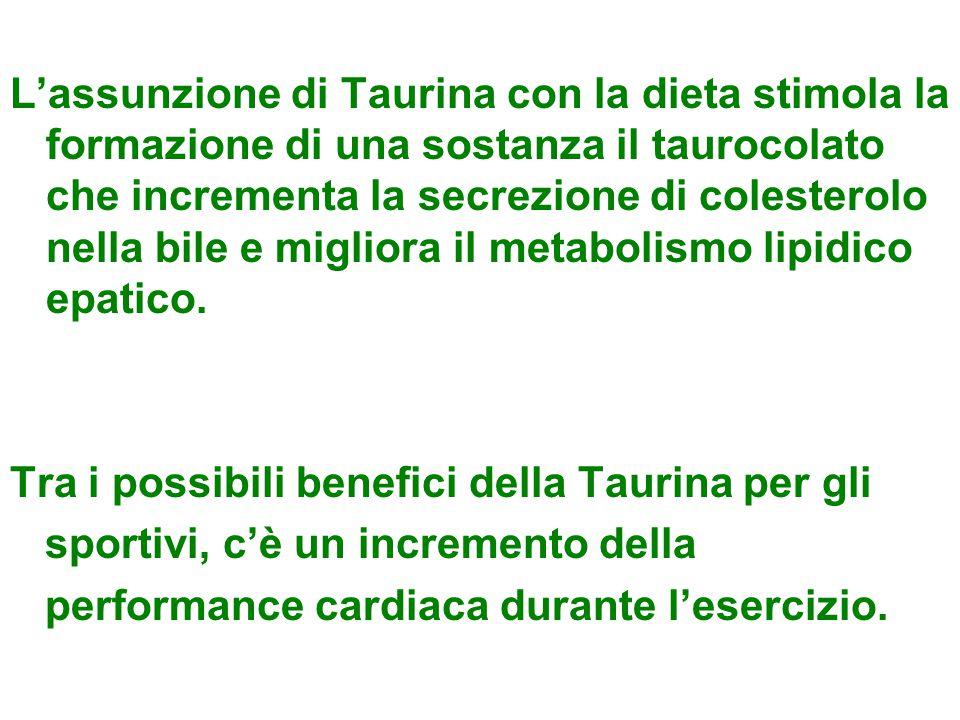 L'assunzione di Taurina con la dieta stimola la formazione di una sostanza il taurocolato che incrementa la secrezione di colesterolo nella bile e migliora il metabolismo lipidico epatico.
