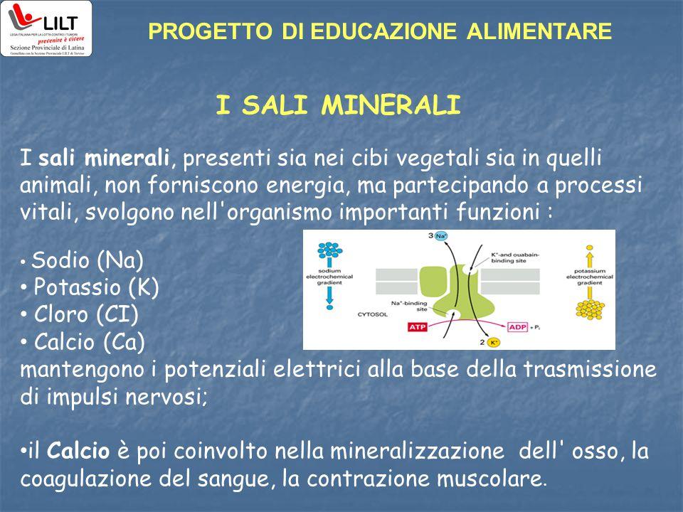 I SALI MINERALI PROGETTO DI EDUCAZIONE ALIMENTARE