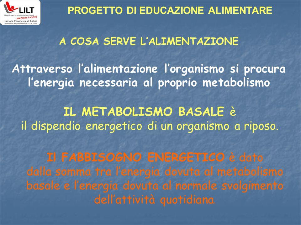 PROGETTO DI EDUCAZIONE ALIMENTARE A COSA SERVE L'ALIMENTAZIONE