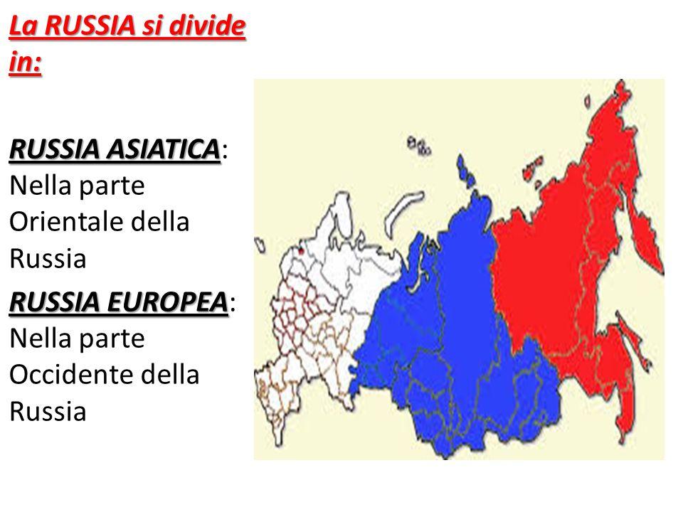 La RUSSIA si divide in: RUSSIA ASIATICA: Nella parte Orientale della Russia.